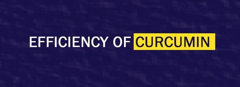 efficiency of curcumin